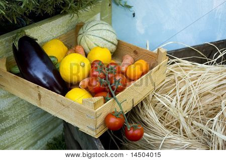 Fresh and ripe biological vegetable and fruit in a wooden case
