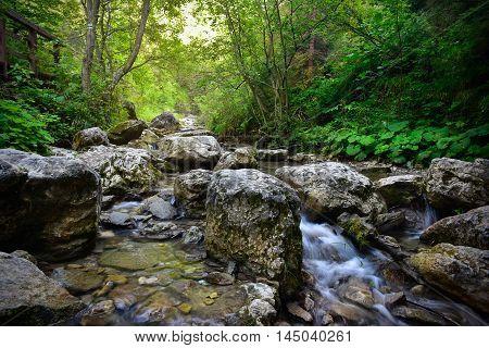 River in Homole ravine in Pieniny mountain