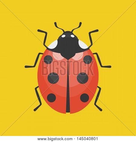 lady bug icon illustration, flat design on yellow background