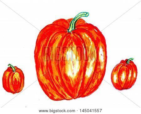 Watercolor and acrylic painted three orange pumpkins hand drawn illustration.