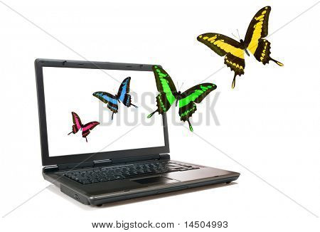 Single modern laptop with some colorful butterflies that fly away from the screen, isolated on white background. Freedom and environmental conservation concept.