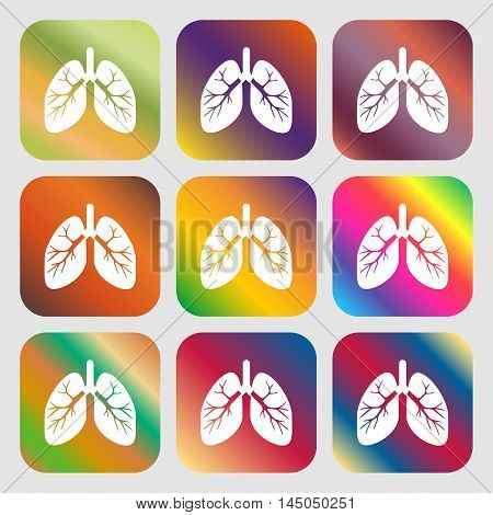 Lungs Sign Icon . Nine Buttons With Bright Gradients For Beautiful Design. Vector