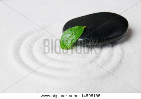 Zen garden pebble detail with green leaf on a raked white sand