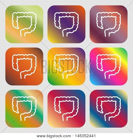 Large Intestine Sign Icon . Nine Buttons With Bright Gradients For Beautiful Design. Vector