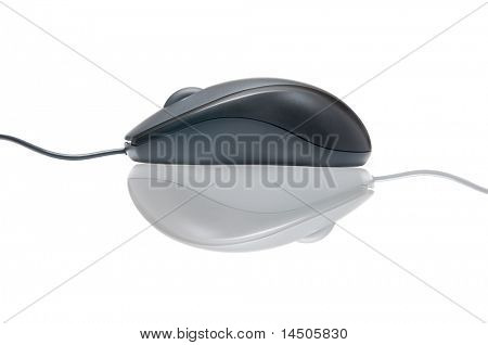New modern mouse with crazy opposite reflection isolated on white background. Go in a different direction!