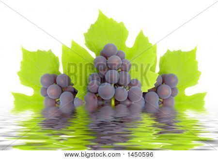 Some Clusters Of A Grapes