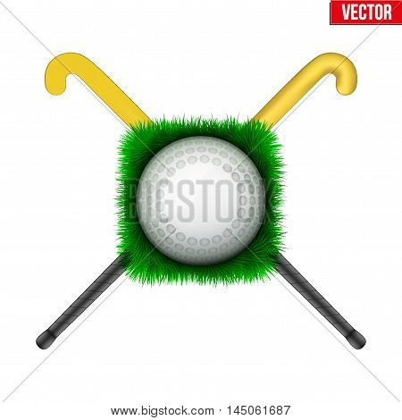 Icon Hockey ball on green grass and sticks. Sport symbol. Vector Illustration isolated on white background.