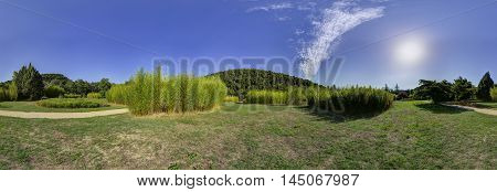 Bamboo Park Field Valley Landscape Panorama View