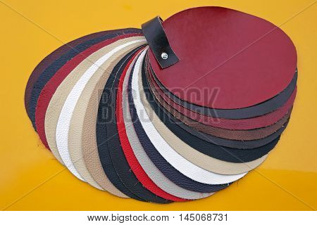 Color Swatch With Various Leathers for Furniture Industry