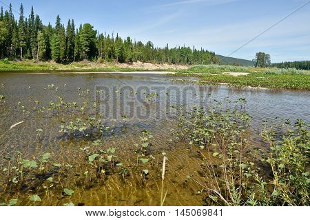 The Shchugor river in the Northern Urals. National Park Yugyd VA. The object of UNESCO world heritage site Virgin Komi forests.