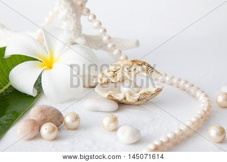 White Pearl In Shell Decorated With Pearl Necklace.