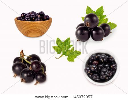 Currants isolated on white background. Collage of black currants isolated on white.