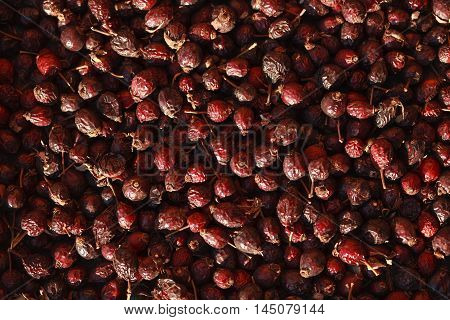 briar background, dogrose photo, dried rosehip berries, dry berry, rosehip photo, rosehip photo, dry dogrose