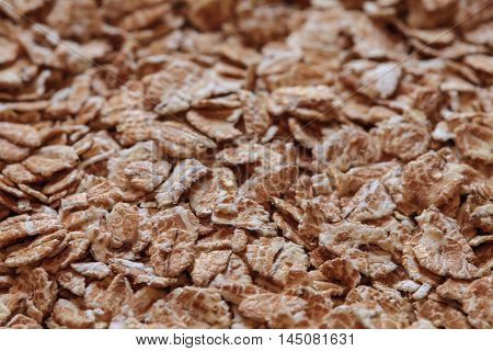 wheat flakes photo, wheat flakes, dry wheat, wheat background, wheat photo, wheat porrige, vegetarian diet, vegan food, health diet, health breakfast, raw wheat