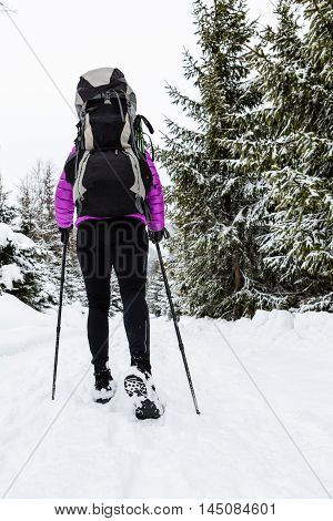 Female backpacker hiking in white winter woods on snow trail. Legs and boots trekking. Recreation fitness and healthy lifestyle outdoors in nature. Motivation and inspiring winter landscape.