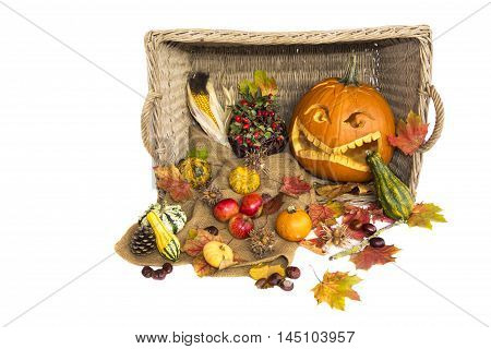 Harvest in autumn with natural vegetables and halloween pumpkin. Inside and outside a basket there are a carved helloween pumpkin fruits like apples corn nuts and so on. Wonderful decoration at Thanksgiving time.