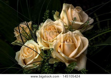 Roses Flower Bouquet Love Nostalgia Summer Impression