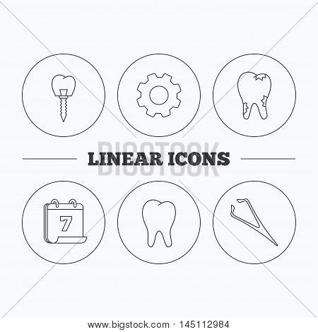 Dental implant, caries and tooth icons. Tweezers linear sign. Flat cogwheel and calendar symbols. Linear icons in circle buttons. Vector