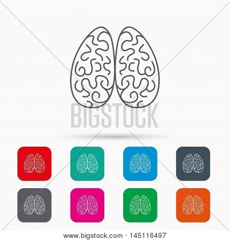 Neurology icon. Human brain sign. Linear icons in squares on white background. Flat web symbols. Vector