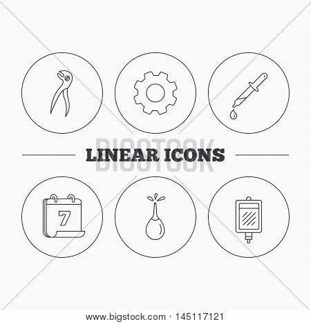 Blood donation, pipette and dental pliers icons. Clyster linear sign. Flat cogwheel and calendar symbols. Linear icons in circle buttons. Vector
