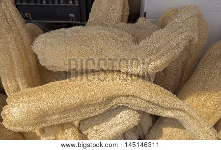 Natural luffa sponges for sale at the city market