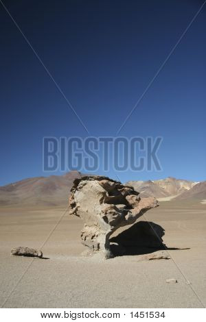 Rock Tree, Potosi, Bolivia