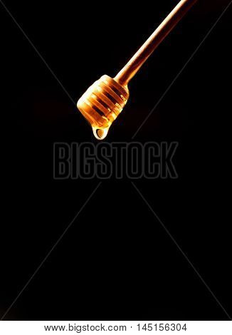 Honey stick dipper. Dripped honey. Honey natural healthy food production