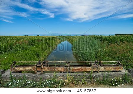 Summer view of a quiet river in the Venetian Plain with the Alps mountains in the background and some old weirs