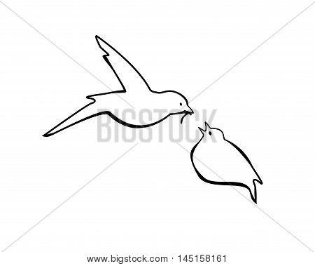 Vector illustration bird feeding chick. Black on white