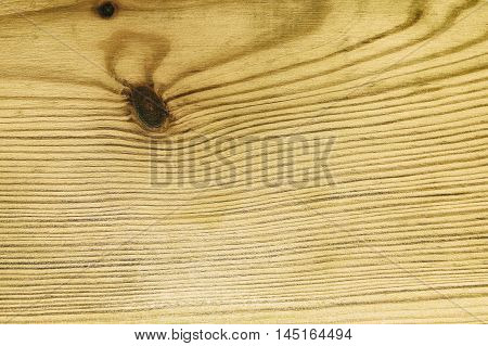 The surface of the wood for a beautiful background.