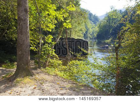 Wilson Creek in North Carolina seen from a forest trail