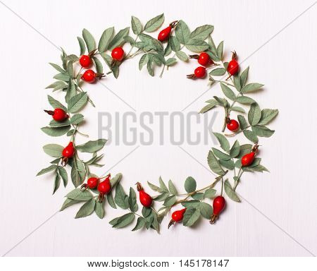 Frame round leaves and red berries pattern of leaves on a white background