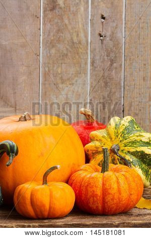 pile of orange pumpkins with fall leaves, copy space on wooden board