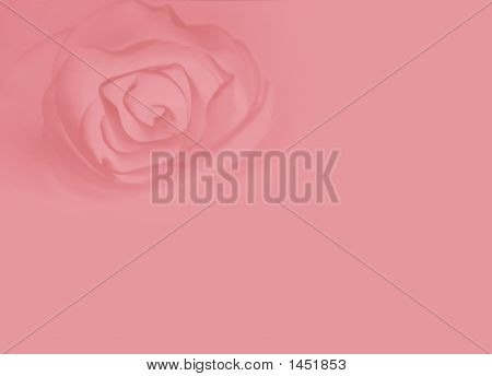 Tender Heart Of A Rose Background