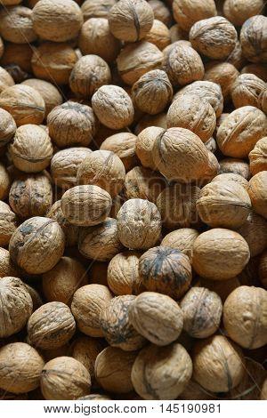 many walnuts closeup. monotone background. beautiful image