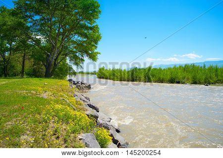 Georgia Countryside Landscape