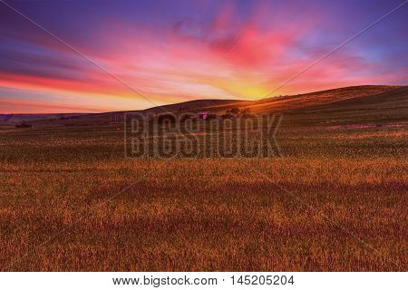green grass field landscape under sun fall down sunset sky and soft clouds in spring with rural house in the background