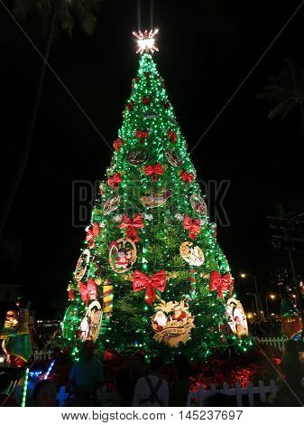 HONOLULU - DECEMBER 5: Light up at night 50-foot Norfolk pine Christmas Tree in front of Honolulu Hale the Mayor Office as part of Honolulu City Lights runs annually throughout the month of December.. Honolulu Hawaii on December 5 2015.