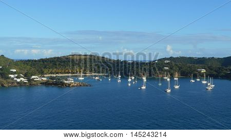 Sailboats anchored in St. Thomas in the Caribbean