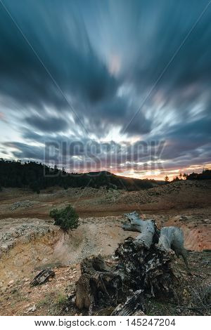 Storm clouds in a bleak landscape at sunset in the National Park of Ifrane, Morocco. in the foreground is a snag.