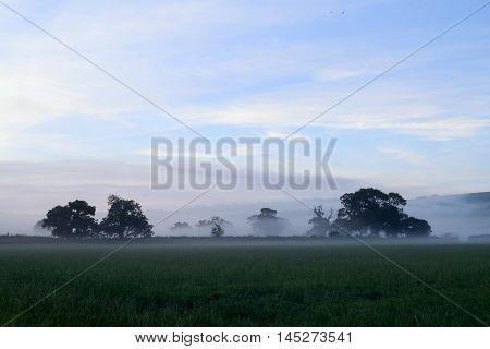 Morning mist over farmland in Axe Valley, Devon