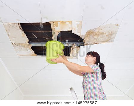 Young Woman Collecting Water In Bucket From Ceiling. Ceiling Panels Damaged Huge Hole In Roof From R