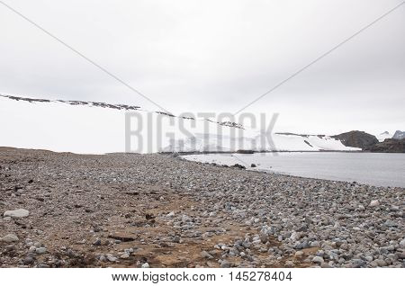 Rock beach and glacier on the background, Antarctica