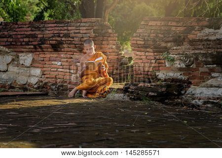 Young Buddhist novice monk reading and study outside