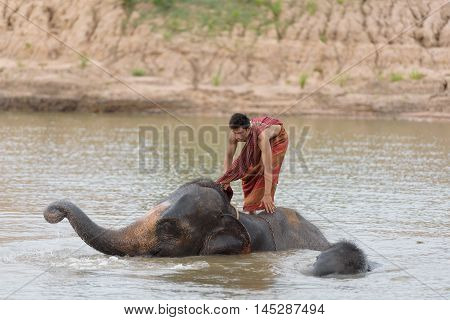 Big elephant and baby bathing in the river with yong man riding on it's back