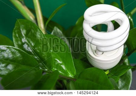 Led Lamp With Green Leaf, Eco Energy Concept, Close Up. Light Bulb On  Background. Saving  And Ecolo