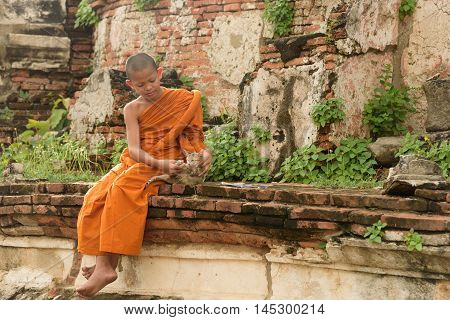 Young Buddhist novice monke with a cat lying on the side