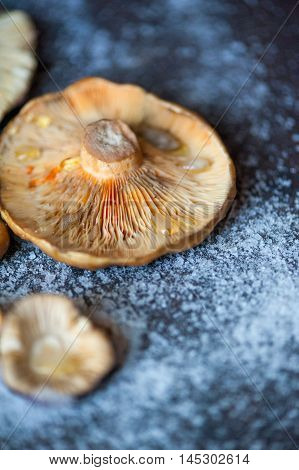 Saffron Milk Cap musrooms cooked on a wooden stove