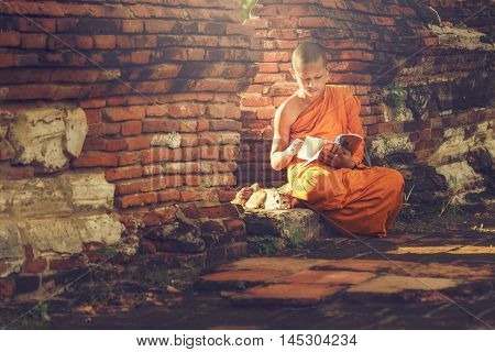 Young Buddhist novice monk reading and study outside with a cat lying on the side