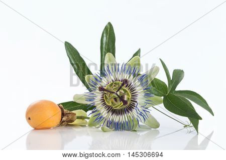 Passion fruit flower with ripe passion fruit isolated